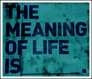 meaning-of-life1